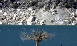 محصول حوزه هنری در جشنواره تسالونیکی روی پرده میرود