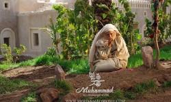 mohamad-s-ameneh