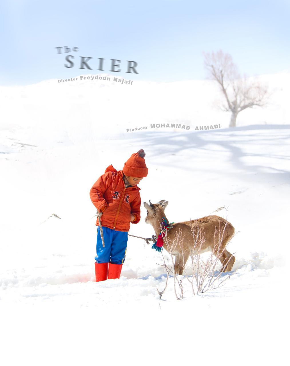 The_skier_Poster